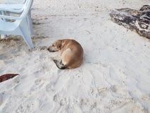 Praia de Boracay Imagem de Stock