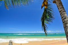 Praia de Brasil Imagem de Stock Royalty Free