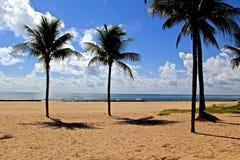 Praia de Brasil Foto de Stock Royalty Free