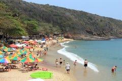 Praia de Brasil Imagens de Stock Royalty Free