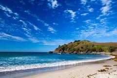 Praia de Cabarita Imagem de Stock Royalty Free