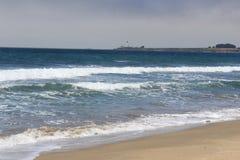 Praia de Califórnia com planta de século foto de stock royalty free