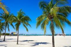 Praia de Cancun Playa Langostas em México imagens de stock