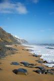 Praia de Charmouth e tampão dourado Dorset Inglaterra imagem de stock