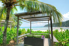 Praia de Cherating, Kuantan, Malásia Imagens de Stock