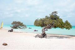Praia de Eagle na ilha de Aruba Fotos de Stock Royalty Free