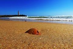 Praia de Faro, Portugal Imagens de Stock