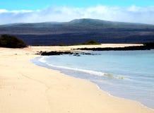 Praia de Galápagos Imagem de Stock