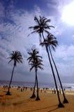 A praia de Goa-India. Fotografia de Stock Royalty Free