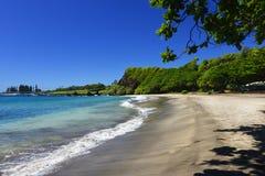 Praia de Hamoa, Hana, Maui, Havaí Foto de Stock