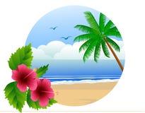 Praia de Havaí Imagem de Stock