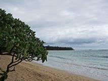 Praia de Hukilau em Laie, costa norte Oahu, Havaí Fotografia de Stock