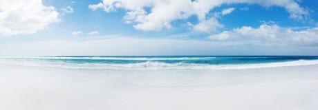 Praia de Ilhas Falkland Imagem de Stock Royalty Free