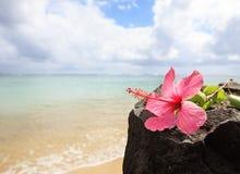 Praia de Kauai Anini foto de stock royalty free