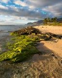 Praia de Maili Fotos de Stock Royalty Free