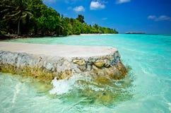 Praia de Maldivas com palmas Foto de Stock