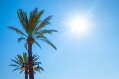 Praia de Malvarrosa, Valência, Espanha Fotografia de Stock Royalty Free