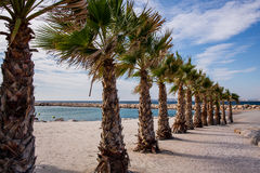 Praia de Marselha Imagens de Stock Royalty Free