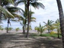 Praia de Masachapa Niocaragua imagens de stock royalty free