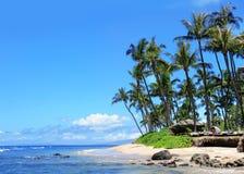 Praia de Maui, Havaí Fotografia de Stock