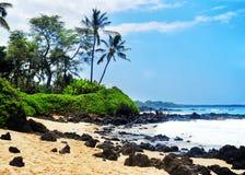 Praia de Maui, Havaí Fotos de Stock Royalty Free