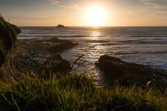 Praia de Muriwai Imagens de Stock