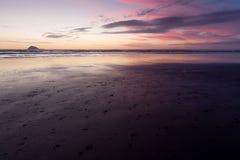 Praia de Muriwai Fotografia de Stock