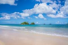 Praia de Nacpan Foto de Stock