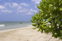Praia de Ngwe Ssaung imagem de stock