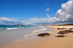Praia de Nova Zelândia com pedras Fotografia de Stock Royalty Free