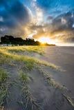 Praia de Oakura Fotos de Stock Royalty Free