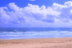 Praia de Ormond - Florida imagens de stock royalty free