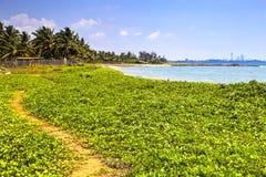 Praia de Palliyawatta, Sri Lanka Imagens de Stock