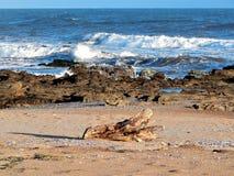 Praia de Paloma do La fotografia de stock