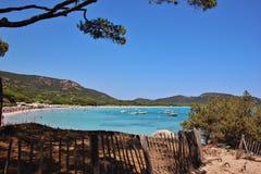 Praia de Palombaggia, ilha de Córsega fotos de stock