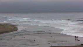 Praia de Pan Ocean Waves On Northern Califórnia da câmera com ideia distante dos pares video estoque