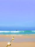 Praia de Patong na ilha de phuket, Tailândia imagem de stock royalty free
