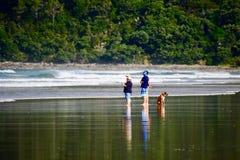 Praia de Pauanui, Pauanui, Nova Zelândia - 24 de fevereiro de 2019: Um grupo de pessoas que discutem algo em uma praia, e um cão  fotografia de stock