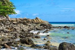 Praia de pedra Fotos de Stock Royalty Free