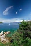 Praia de pedra com o mar claro do tourquise com o pinheiro na Croácia, Istria, Europa Fotos de Stock Royalty Free