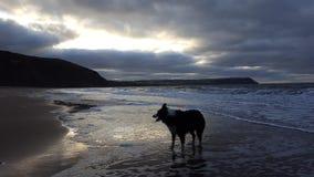 Praia de Penbryn Imagem de Stock