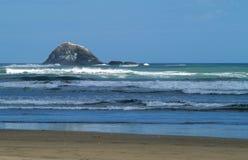 Praia de Piha foto de stock royalty free