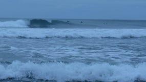 Praia de Piha, Nova Zelândia Foto de Stock Royalty Free
