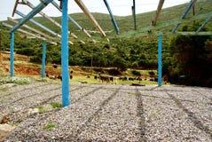 Praia de Porto Katsiki fotografia de stock
