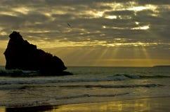 Praia de Portugal Imagem de Stock Royalty Free