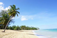 A praia de Punta Popy Foto de Stock