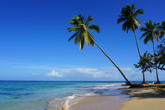 A praia de Punta Popy, Las Terrenas Imagem de Stock