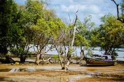 Praia de Railay na maré baixa Imagem de Stock Royalty Free