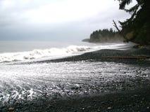 Praia de Sandcut, ilha de Vancôver BC fotografia de stock royalty free