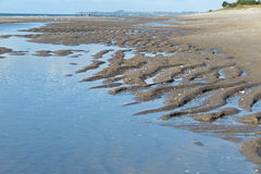 Praia de Sandy na maré baixa Fotografia de Stock Royalty Free